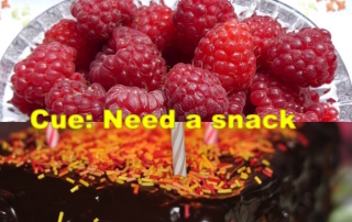 "image of berries versus chocolate cake, text: ""Cue: Need a snack"""