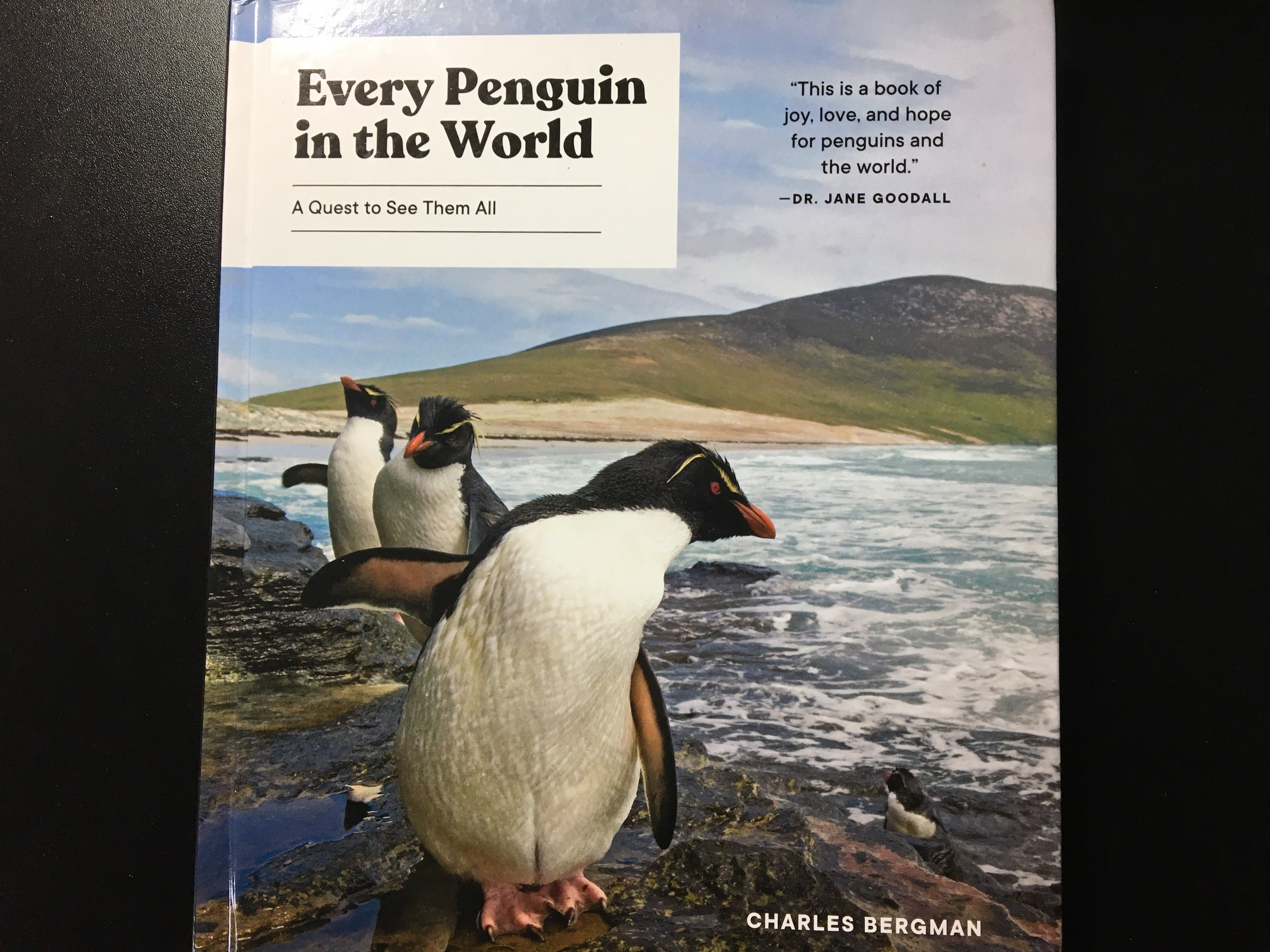 Book Cover Every Penguin In the World